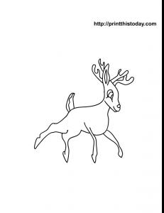 rudolf the reindeer