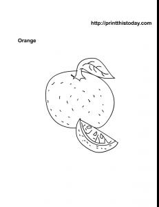 Free Printable Orange Fruit Coloring Page