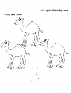 Trace, count and color number 3 Worksheet