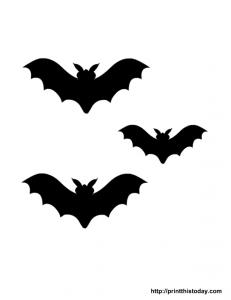 Spooky bats