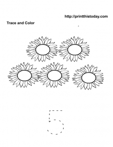 5 sunflowers , trace and color kindergarten activity