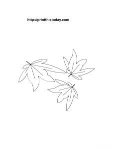 Maple leaves printable coloring page