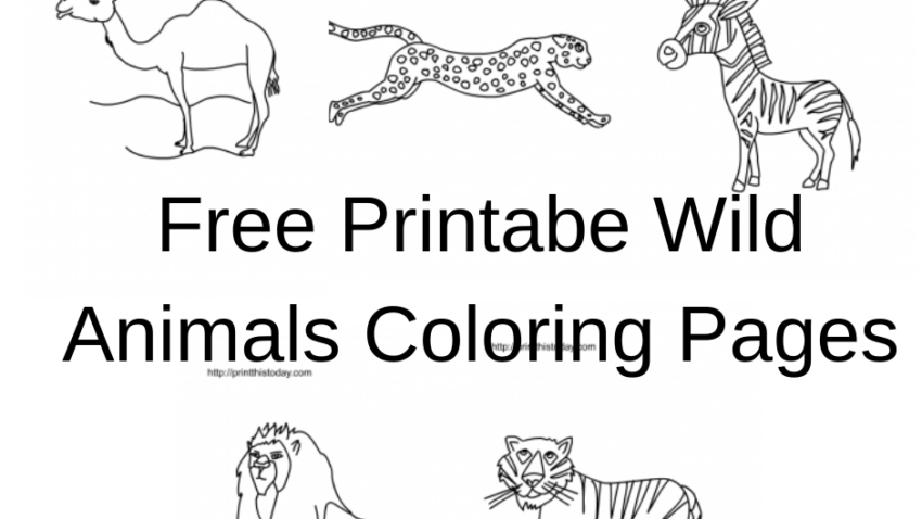 Free Printable Wild Animals coloring pages