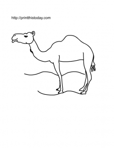 free printable camel coloring page
