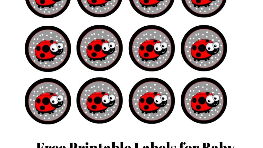 Free Printable Labels for Baby Shower with a Ladybug