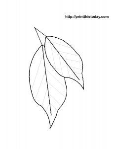 Free printable autumn coloring pages