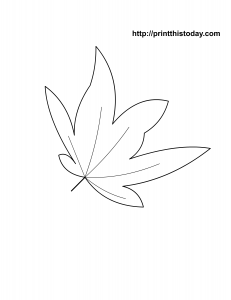 free printable autumn coloring page with maple leaf
