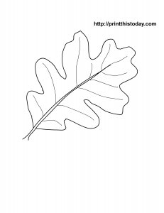 free printable oak leaf coloring page