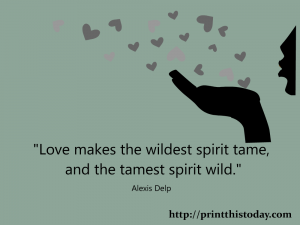 Love makes the wildest spirit tame and the tamest spirit wild.